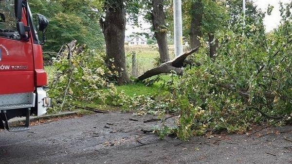 Вчерашний ураган в Польше