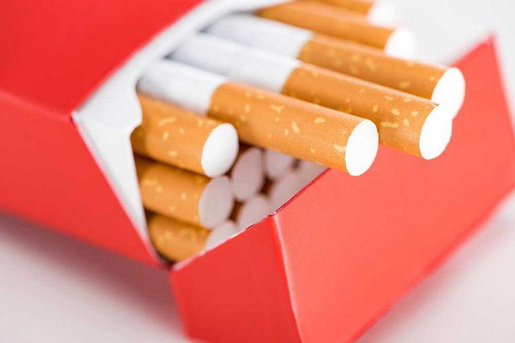 В Польше задержали 5 украинцев на подпольной табачной фабрике