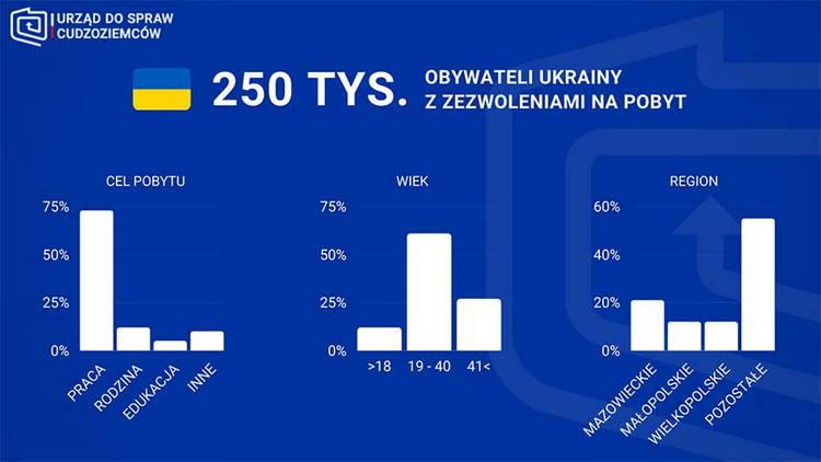 Более 250 тыс. граждан Украины имеют вид на временное (до 3 лет) и постоянное (5-10 лет) проживания в Польше. Около 80% имеют карты временного пребывания.