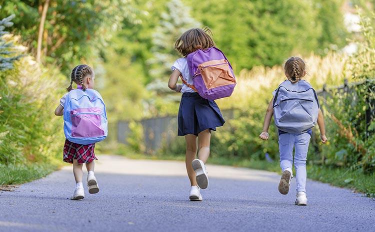 Польское правительство ждет предложений Украины по созданию школ для украинцев в Польше