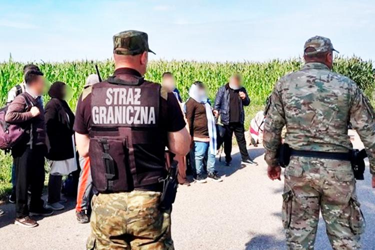 На польско-белорусской границе задержали крупнейшую в истории группу иммигрантов
