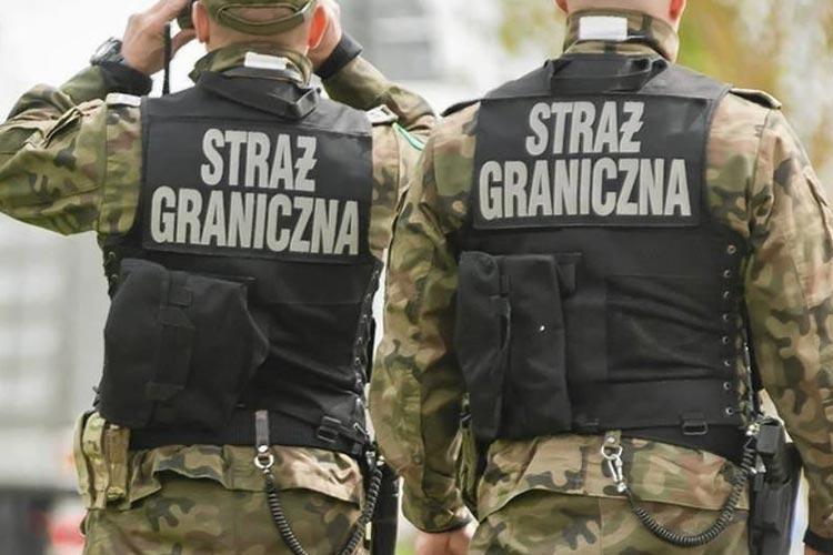 Польша зафиксировала 3500 попыток незаконного пересечения границы из Беларуси